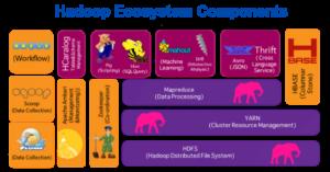 Hadoop Ecosystem Components